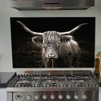 Keuken met schotse hooglander